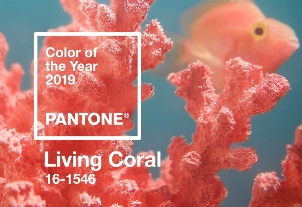 цвет 2019 корал